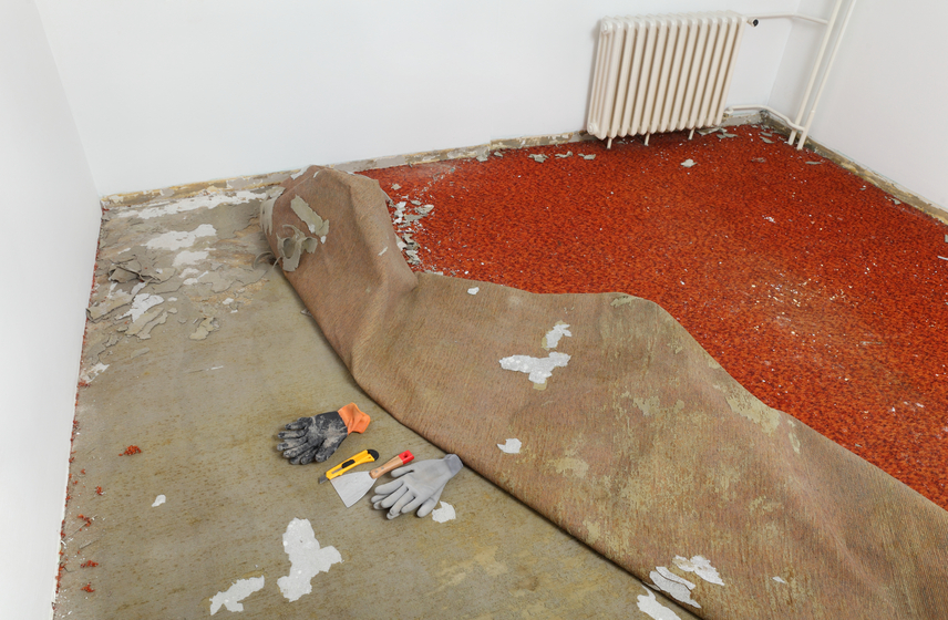 Home renovation, carpet remove in a room