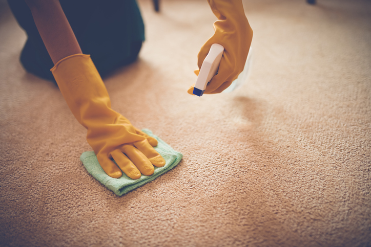 Close-up image of woman removing stain from the carpet