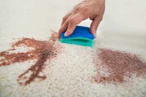 Is Your Carpet Saying Goodbye?