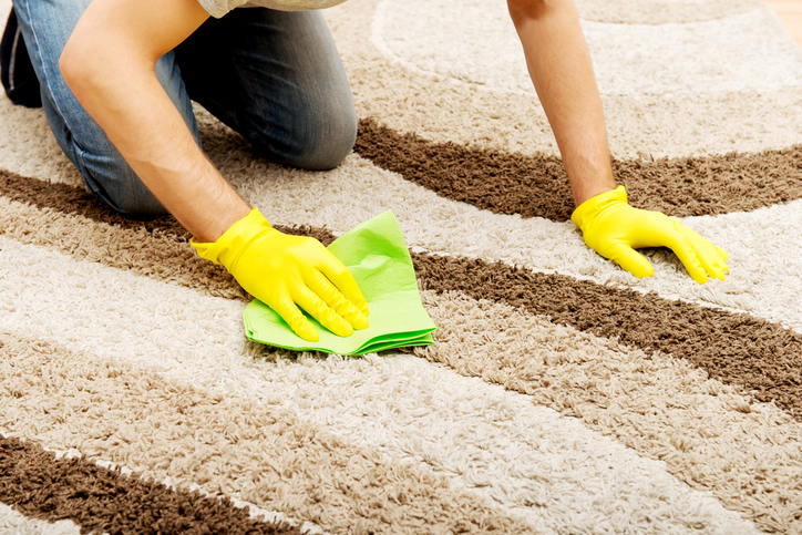 Man in yellow gloves cleaning carpet.